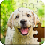 Jigsaw Puzzle APK (MOD, Unlimited Money) 6.20.042 for android