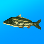 True Fishing. Fishing simulator APK MOD Unlimited Money 1.12.4.600 for android