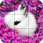 Puzzle – Cute bunnies APK MOD Unlimited Money 1.28 for android