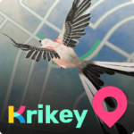 Krikey APK MOD Unlimited Money 2.9.0 for android