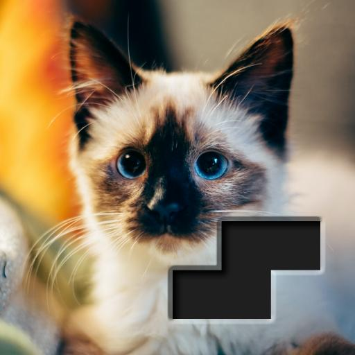 Block Square Jigsaw Puzzle APK MOD Unlimited Money 1.0.6 for android