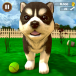 Virtual Puppy Simulator APK MOD Unlimited Money 1.2 for android