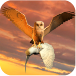 Clan of Owl APK MOD Unlimited Money 1.1 for android