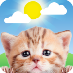 Weather Kitty – App & Widget Weather Forecast APK (MOD, Unlimited Money) 5.3.0   for android