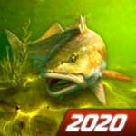 My Fishing World – Realistic fishing APK MOD Unlimited Money 1.14.95 for android