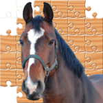 Jigsaw Horses APK MOD Unlimited Money 2.0 for android