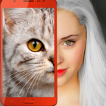 Kittens what cat are you prank APK MOD Unlimited Money 2.7 for android