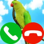 pet fake incoming call APK (MOD, Unlimited Money)  for android 9.0