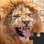 Puzzles for Adults no internet APK MOD Unlimited Money Varies with device for android